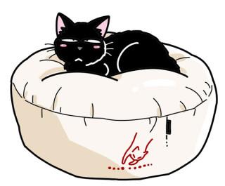 ふかふかニャ〜♡すっぽり包まれる幸せ「カラーコットン ふくまるベッド」
