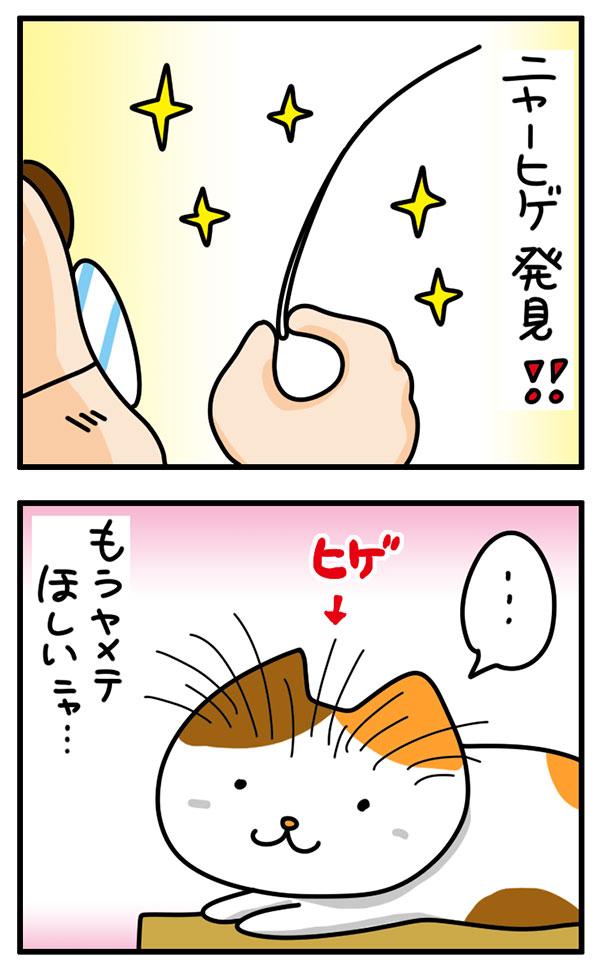 ビーグラッド 猫のひげケース(ロング)