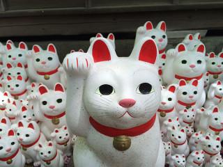 招き猫発祥の地、世田谷大谿山豪徳寺に行ってきたよ