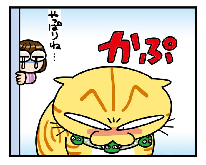 あわせてぷにゅぷにゅ3ぷにゅぷにゅ おもしろ おしゃれ 猫首輪