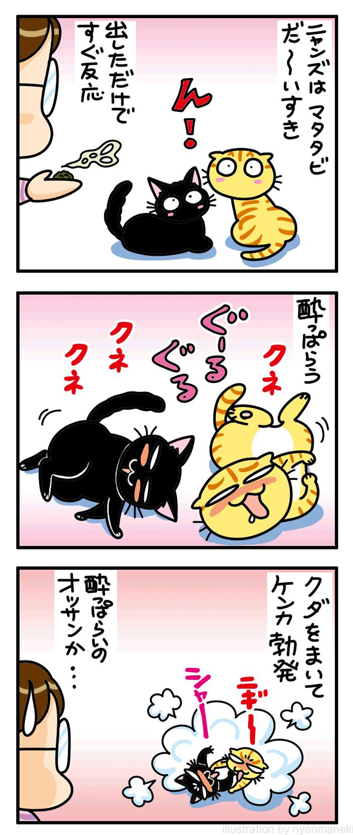 猫用またたび瓶/葉 Crr クルル