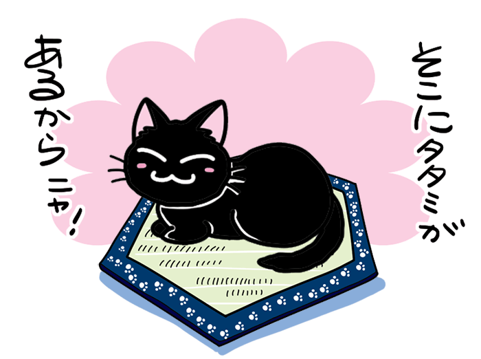 猫転送装置 猫ホイホイ畳