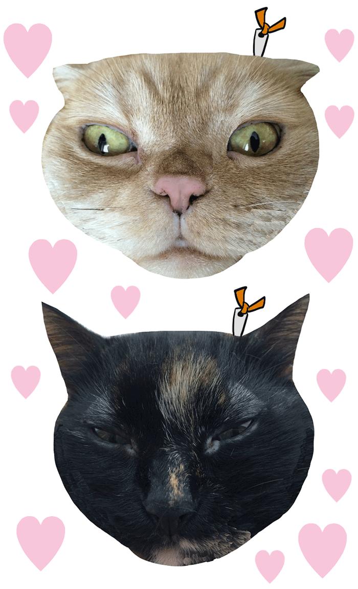 猫顔財布(コインケース)