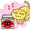 毛玉をよく吐くニャンコに、オーガニックの国産猫草「ニャッパ」安心して食べさせられるニャ!