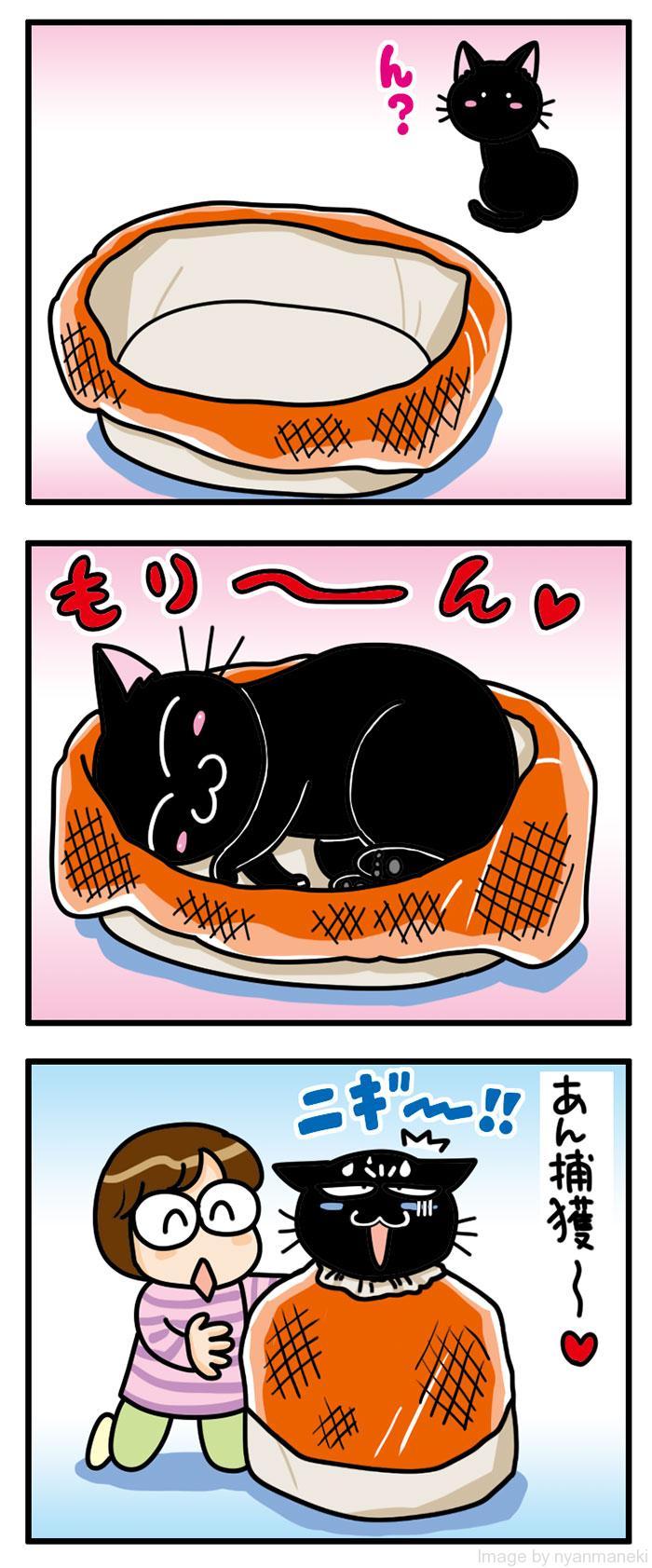 猫用保定袋 【にゃんぷくろ】