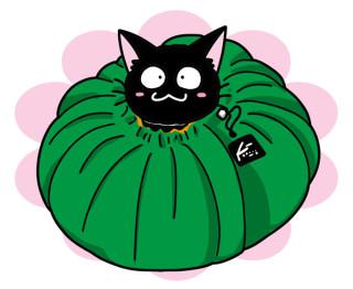 巾着を絞れば、ニャンコがすっぽり。野菜の型のベジタブルベッドだニャ!
