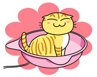 夏に続いてまたまた登場!今度はひえひえじゃなくて、ヒーター付きで暖い、ポカポカの猫鍋なのニャ〜!