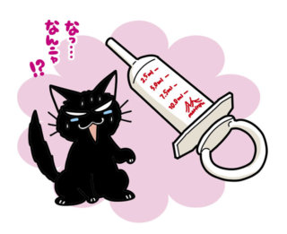 ニャンコのお薬の後に、たっぷりお水を!注入器が便利!あんの病気その3