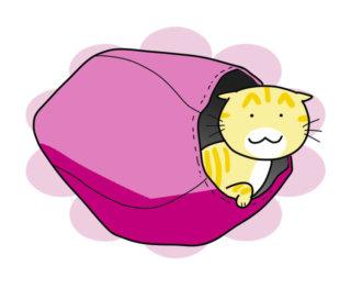 寒い季節に、コロンとま〜るいベッド「2WAYキャットケイブ」暖かドーム型ベッドだよ