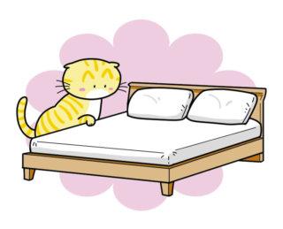 にゃにゃにゃんと!家具屋さんが「ネコ家具」を作っちゃったよ!